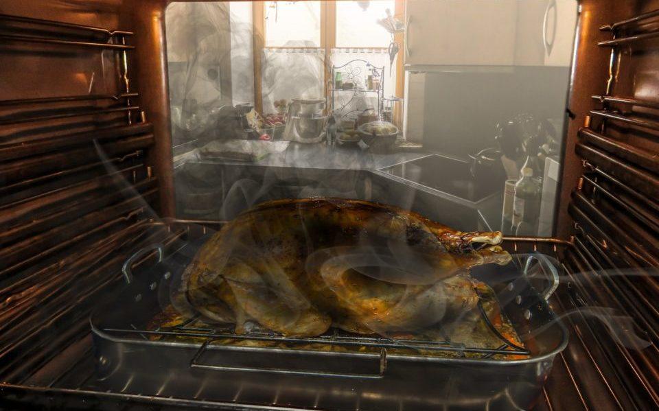 roast-goose-1044217_1920
